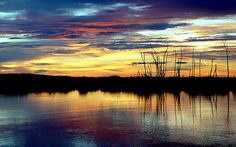 Did you know that the largest lake in Florida, Lake Okeechobee, is as big as the entire state of Rhode Island?