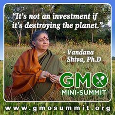 Gmo Free Gardening Get the truth about GMOs and how to avoid them in your daily diet. Join the Food Revolution Summit and the GMO experts in this FREE Online Summit October Vandana Shiva, Organic Gardening Tips, Organic Vegetables, October 25, Worlds Of Fun, Organic Recipes, Safe Food, Good To Know, Investing