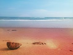 Bali Beach, Island, Day, Outdoor, Outdoors, Bali, Islands, Outdoor Games, The Great Outdoors