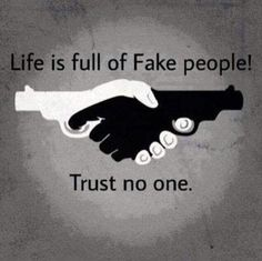 life is full of fake people meme