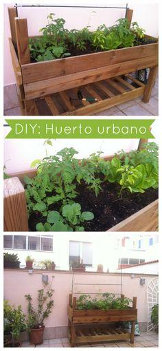 DIY: Cómo hacer un huerto urbano. Fácil y Barato : x4duros.com