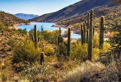 Scorpion Cove  - Lake Pleasant  (Peoria AZ ) :)
