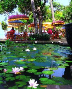 Bali is great in November!