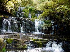 Purakaunui Falls, Clutha District. South Island. New Zealand. Worth the drive.