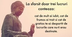 Heyadoo - A tool for everyone Buddha, For Everyone, Life Lessons, Ecards, Life Quotes, Memes, Mai, Croissant, Photography