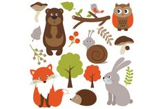 Woodland Animals by LoveGraphicDesign on Creative Market