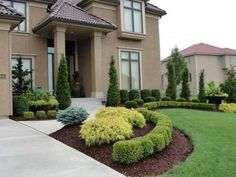 Front Yard Evergreen Landscape Garden 6