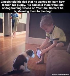 Boy wanted to learn how to train his puppy