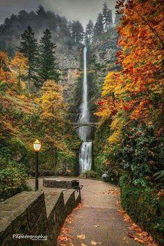 Multnomah Falls (near Portland, Oregon) - gorgeous autumn waterfall scene Oregon Travel, Travel Usa, Travel Portland, Beach Travel, Portland Oregon Hikes, Oregon Vacation, Image Nature, All Nature, Landscape Photography