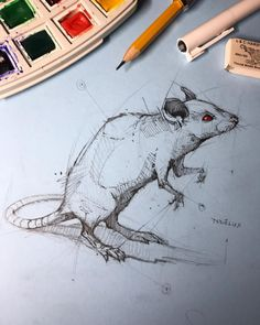 Psdelux is a pencil sketch artist based in Tatabánya, Hungary. He usually draws animal sketches. Psdelux also makes digital drawings. Animal Sketches, Animal Drawings, Cool Drawings, Drawing Sketches, Pencil Drawings, Sketching, Mouse Sketch, Pencil Drawing Tutorials, Art Tutorials