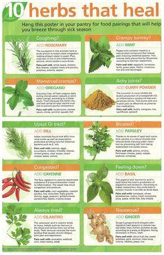 healing herbs for women - #HerbsforWomen