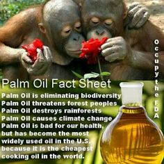 Palm Oil Fact Sheet ...