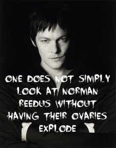 One does not simply look at Norman Reedus without having their ovaries explode.