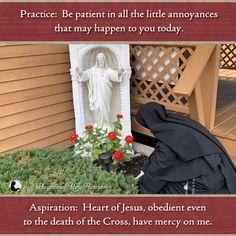 Our Savior, Heart Of Jesus, Sacred Heart, Roman Catholic, Patience, Baby Car Seats, Daughter, Mary, Faith