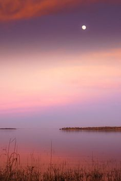 Dreamy Moon NightA moon was softly shining in twilight, creating a dreamy atmosphere at Lake Somerville, Texas. #dreamy #dreamysky #eveningsky #pinksky #reflection #sunset #texas #twilight