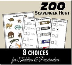 17 FREE Zoo Scavenger Hunts (Toddler - 6th Grade)