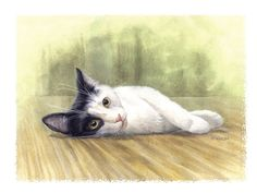 How to Paint a Pet (this example is a cat) Portrait in Watercolor by Michael DiGiorgio