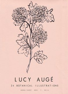 Lucy Auge Pink Hydrangea Exhibition Poster Buy online Printed on pure pink G F Smith Extract Paper Tag Art, Hip Hop Graffiti, Botanical Illustration, Illustration Art, Hortensia Rose, A Boutique, Poster Art, Pink Hydrangea, Graphic Design Posters