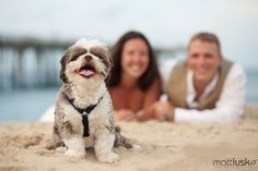 Matt Lusk Photography; Outer Banks Wedding Association; Outer Banks Weddings; Puppy love