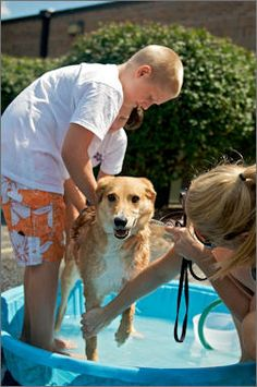 Here's a different fundraiser: The Fundraising Dog Wash.