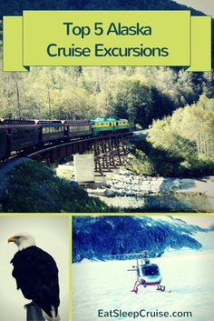 Top 5 Alaska Cruise Excursions for your journey way up north!