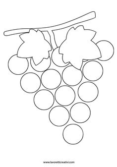 Frutta autunnale - uva
