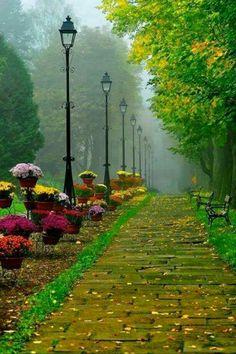 .pretty path. t