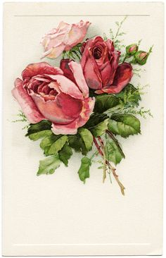 free vintage postcard, antique birthday postcard, Victorian roses image, rose clipart, printable flower graphics