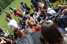 """L'on. Michela Vittoria Brambilla parla della proposta di legge """"per garantire il libero accesso degli animali domestici sui mezzi di trasporto e nei luoghi pubblici e privati"""" al 24.Raduno Cani Simpatia a Milano.  https://www.facebook.com/media/set/?set=a.295716433954961.1073741839.184761641717108&type=1"""