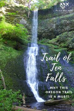 One of the best waterfall hikes in Oregon. Oregon's Trail of Ten Falls doesn't get as much attention as Multomnah, but it's totally stunning and offers 10 waterfalls, a moderately easy hike, and is easy driving distance from Portland | why you should hike the Trail of 10 Falls in Silver Falls State Park #oregon #waterfalls #trailoftenfalls Hiking Usa, Colorado Hiking, Oregon Road Trip, Oregon Trail, Road Trips, Solo Travel, Travel Usa, Weekend Hiking, Oregon Waterfalls