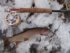 Fishing Times, Fly Tying, Trout, Fly Fishing, Outdoor Adventures, Hunting, Travel, Life, Voyage