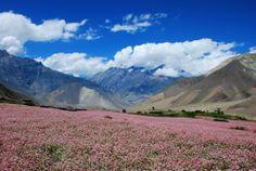 Splendid trekking around Annapurna, Nepal!
