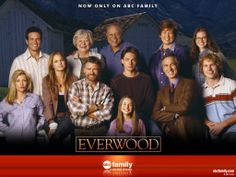 Everwood.  This show ended way too soon.