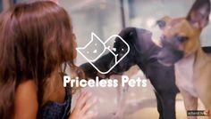 Quatro Patinhas NGO - Priceless Pets Project (2015) (Brazil)  http://adland.tv/commercials/quatro-patinhas-ngo-priceless-pets-project-2015-brazil#DvXbdOApAo2T7St3.99