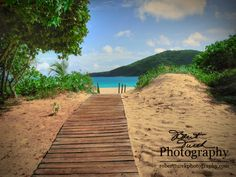 Walkway to Beach (la playa) Puerto Rico Resort Island Culebra.  Puerto Rico IS a United States Commonwealth. You do not need a passport to visit if you are a US Citizen! Hola.