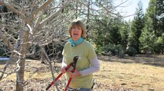 Growing Walnut Trees (+playlist)