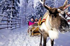 Thomson Holidays - Holidays in Lapland