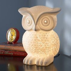 Sale ends soon. Our wooden Owl Night Light is going to be the best sleepover guest ever. It's so polite it will provide your kid's room or nursery with a soft, soothing glow night after night. Objet Deco Design, Owl Lamp, Owl Nursery, Woodland Nursery, Nursery Ideas, Owl Themed Nursery, Nursery Lamps, For Elise, Owl Always Love You