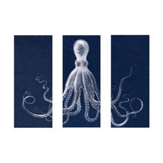 Home - Lord Bodner's Octopus Triptych, in Blue | Natural Curiosities - octopus, art found on Polyvore