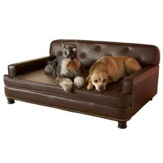Enchanted Home Pet Library Sofa 405 by 30 by 18Inch Brown >>> Check this awesome product by going to the link at the image.
