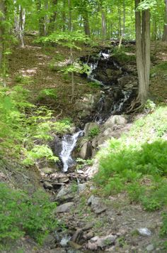 small stream water fall coming down a hill
