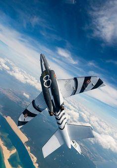 Ce cliché permet d'admirer l'intrados décoré de l'Alpha Jet.