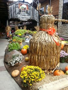 minges pumpkin festival 2020