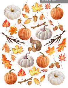 Autumn Illustration, Botanical Illustration, Watercolor Illustration, Autumn Cozy, Autumn Art, Journal Stickers, Planner Stickers, Illustrator Video, Iphone Wallpaper Fall