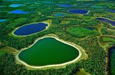 Pantanal : l'autre nature du Brésil