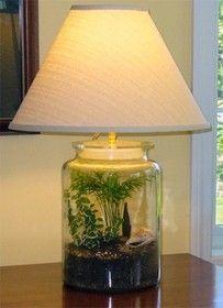 Fillable Lamp Base For Terrarium