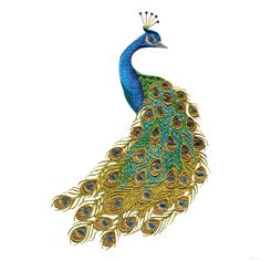 peacock colors for home | Swnpa135 Peacock Embroidery Design