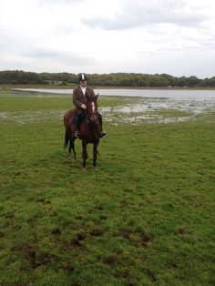 First time Twix went huting.  Autumn Hunting with the Galway Blazers. #loveirishhorses Email coopershillequine... for more information on #horseriding & #hunting #vacations in #Ireland