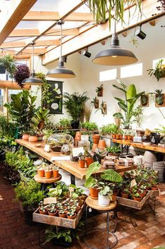 Indoor Vertical Gardening Tips and Ideas Organic gardening isn't always about food to eat. Some people enjoy growing flowers and other forms of plant life as well. Garden Shop, Dream Garden, Home And Garden, Backyard Greenhouse, Greenhouse Plans, Homemade Greenhouse, Cheap Greenhouse, Garden Nursery, Plant Nursery