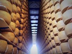 2 all #cheeselovers + #cheesemakers: Endless #cheese - so beautiful! #ParmigianoReggiano - haydryers.com - With best compliments: AgriCompact Technologies GmbH, Germany